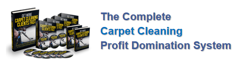 The Smart Carpet Cleaner
